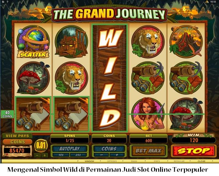 Mengenal Simbol Wild di Permainan Judi Slot Online Terpopuler